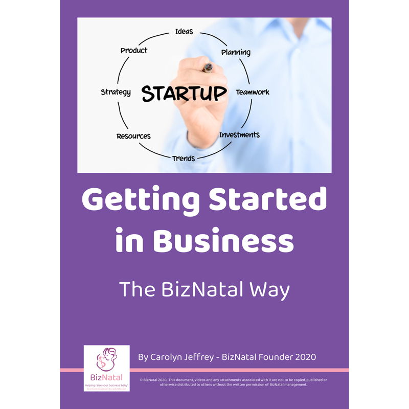 Getting Started in Business - E-Book - The BizNatal Way